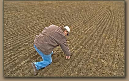Respected Columbia Basin fieldman Dave Entel inspects seed placement in Pasco Basin field.