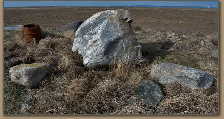 Ice Age Floods erratics removed from field.